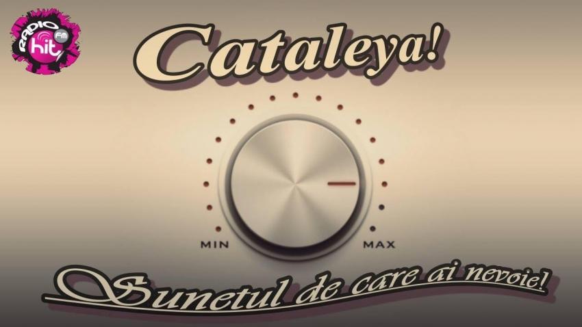 Cataleya HiT - Moderator Live
